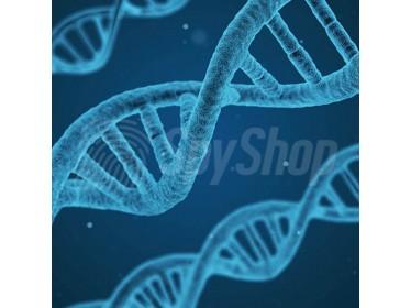 Dyskretny test DNA na sprawdzenie ojcostwa bez udziału matki - 100% pewny